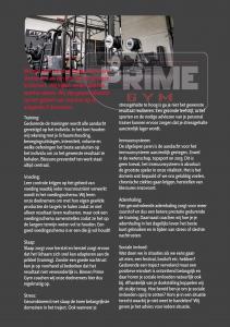 Flyers Prime Gym versie 19
