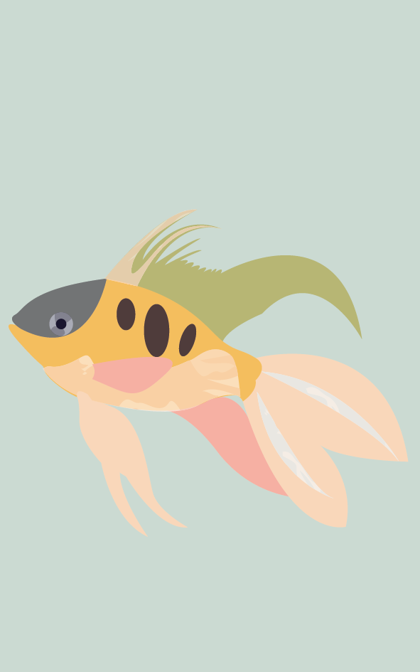 Vissen2.2_Tekengebied 1