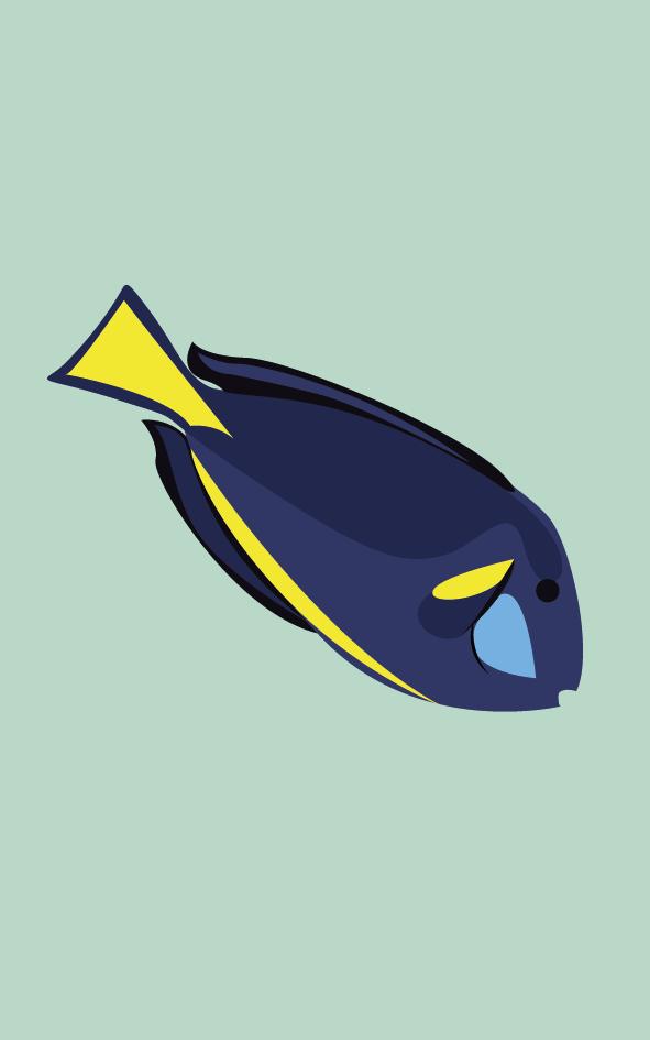 Vissen3.2_Tekengebied 1