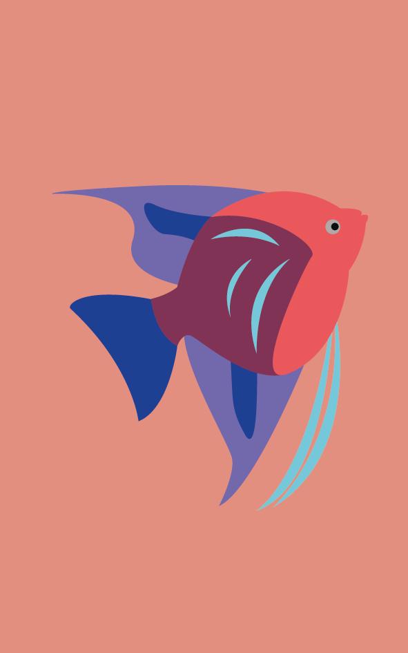 Vissen5_Tekengebied 1